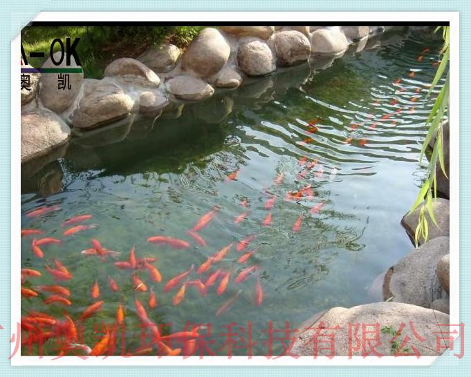 广州奥凯环保水处理设备有限公司简介及工程案例分析。