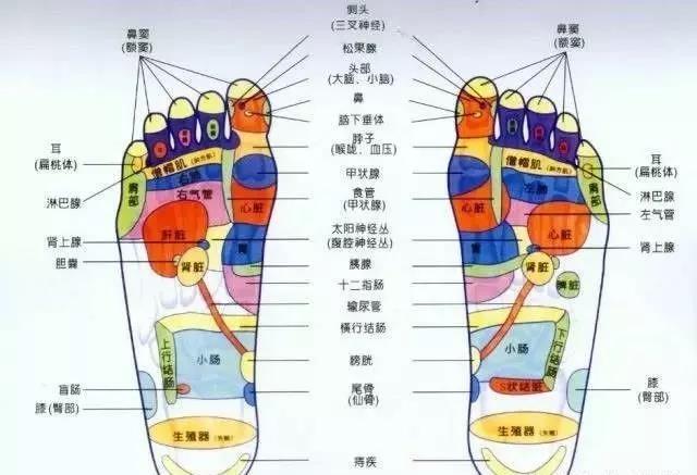 【炙芝林】脚上有一个穴位,男人揉它更强壮,女人揉它更柔美!