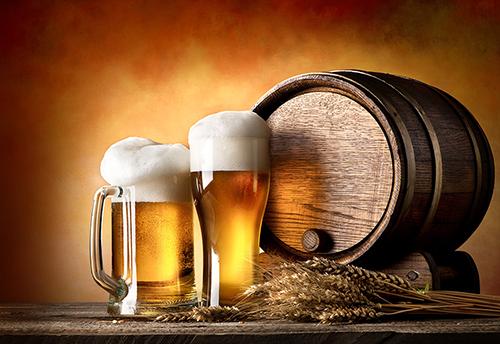啤酒项目申请报告主要内容