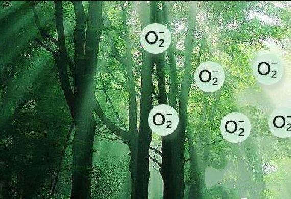 贵州桃都开启'负氧离子'氧吧生活