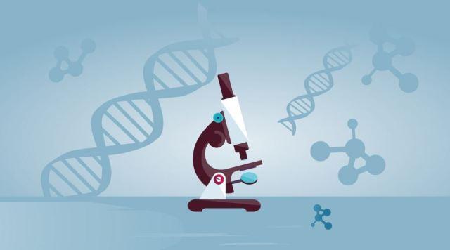 基因健康管理师提醒做个叶酸检测,科学化、个性化的补充叶酸!