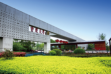重庆大学法治建设培训产品,因高品质而闪光