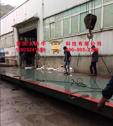 大角牛专业生产大角牛地磅