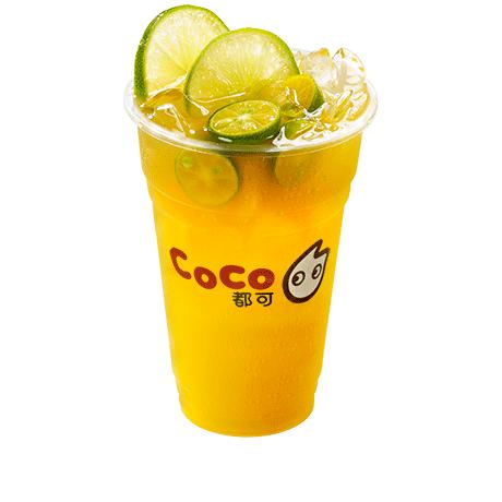 CoCo都可直供都可coco奶茶销售、代理与批发
