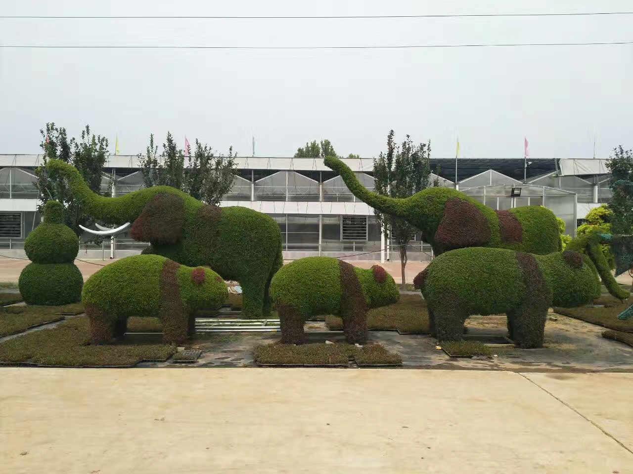 陕西波普盛观空间艺术设计有限公司是一家以立体绿雕怎样做、植物雕塑和立体花坛设计为主要业务的公司。我们致力于提供有优质的承办菊花展服务。陕西波普盛观空间艺术设计有限公司成立于2014-10-27,作为一家社会责任感强的公司,波普盛观将依托强大的实力,在绢花造型领域内树立最具口碑的品牌形象。