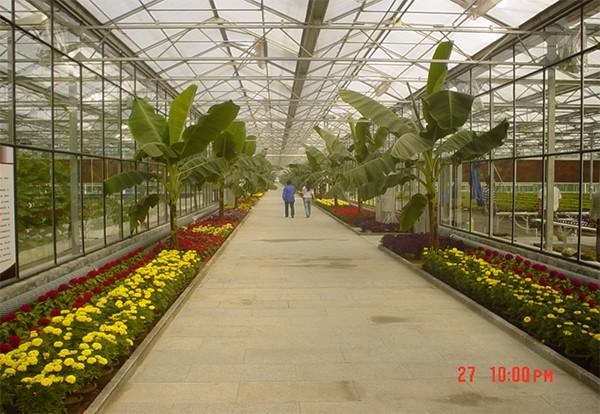 众拓温室专业生产温室大棚厂家