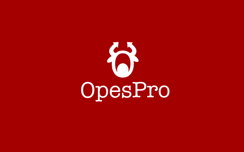 OesPro提供专业的母基金管理系统业务