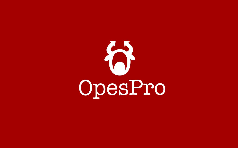 OesPro提供股权项目管理系统业务