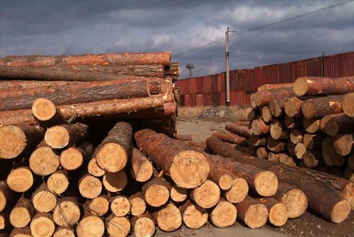 的质量好的木业制品厂太阳旭天好