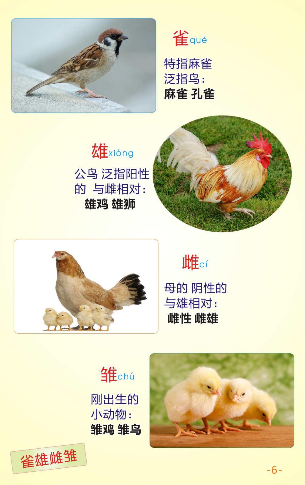 快快识字专业从事汉语学习课程