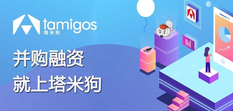 塔米狗分析报告:深圳振华集团有限公司3.4393%股权转让项目