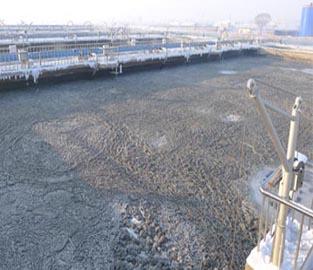 金测提供专业的水质检测业务