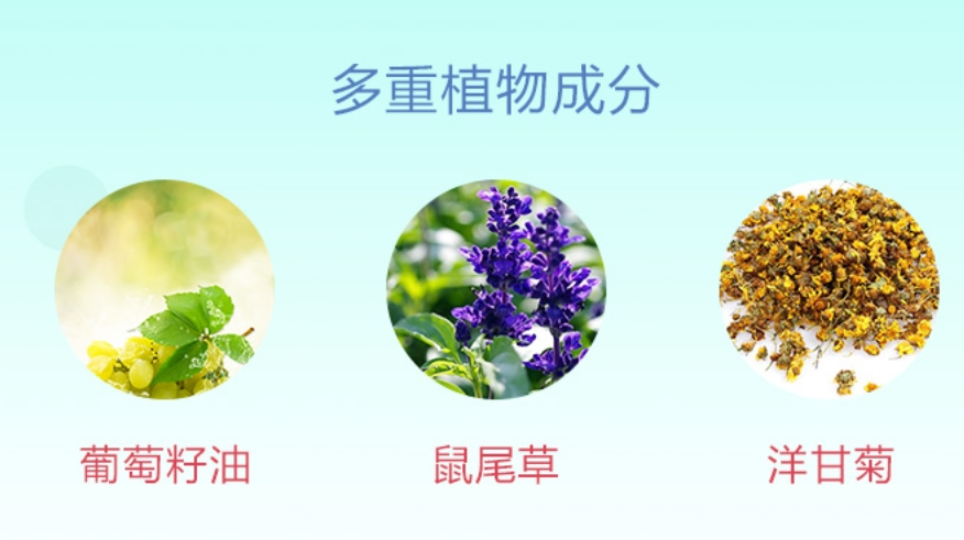 Misitin美诗婷专业生产精油、酵素
