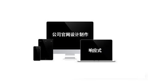 国内上海网站建设哪种品牌的好公司,选择财税通软件有限