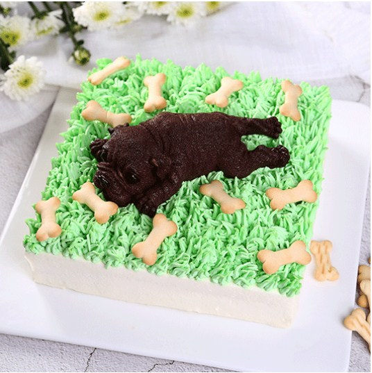 5cke专业销售网红蛋糕价格合理