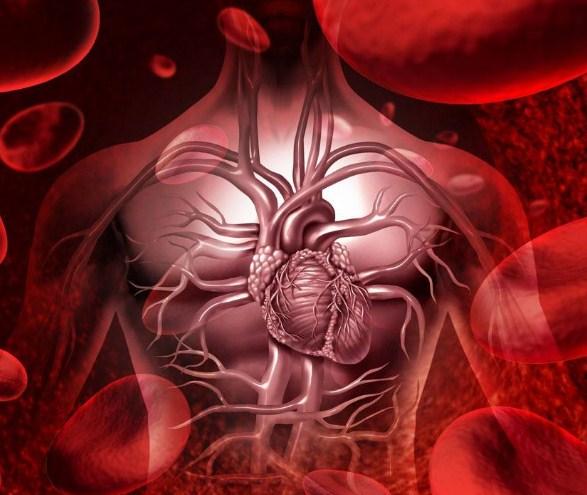 治疗心血管