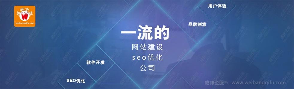 百度seo专业性哪家强认准威邦企服百度排名