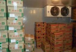 誰知道?哪里賣的增城食材配送公司實惠||