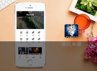 重庆app开发价格适中的重庆公众号开发