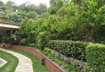 声誉好的长沙别墅景观供应商当属,湖南私家花园施工在哪家买