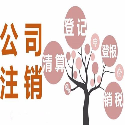 广东省厂家直销沙井营业执照办理 多种规格型号